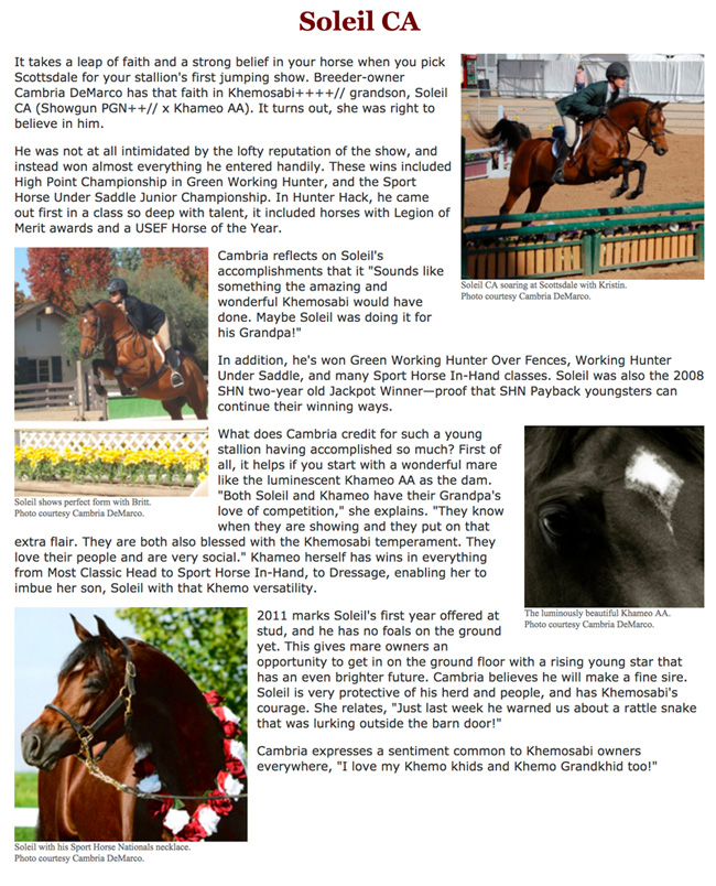 2011sporthorse payback article